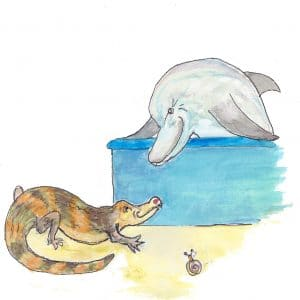 Alligator and Dolphin